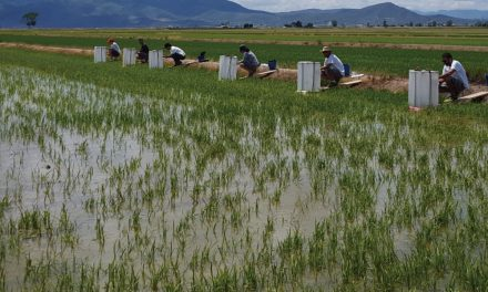 Comprometidos con la agricultura sostenible