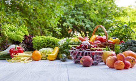 El sector de la alimentación ecológica en España. Últimas adquisiciones del Grupo Ebro en este ámbito.