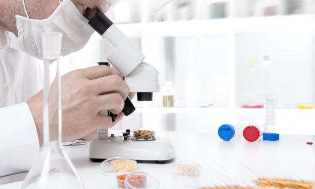 Grupo Ebro, referente internacional en la investigación y el desarrollo de productos aplicados al sector de la alimentación