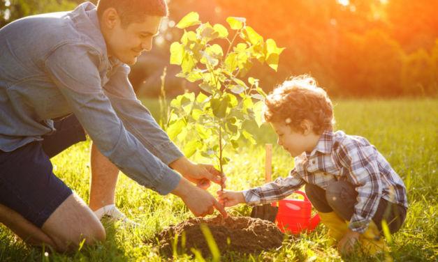 Cómo acercar la sostenibilidad a nuestros hijos