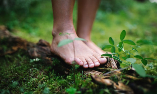Qué es la ecoterapia